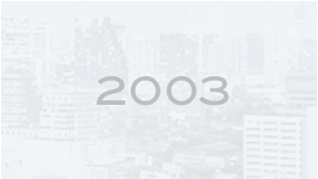 RMA Group Milestones for 2003