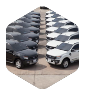 Fleet Solutions and Special Vehicles